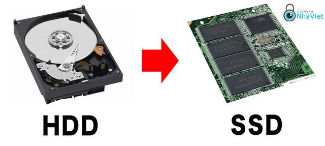 O cung SSD co ben khong