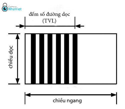 TV Line