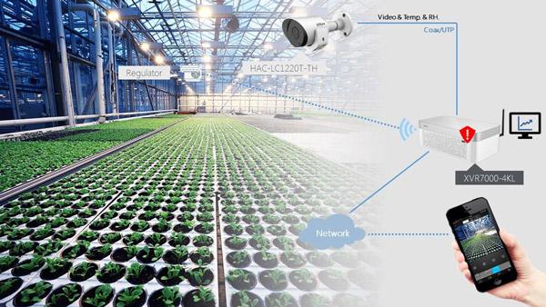 Camera công nghệ IoT Dahua